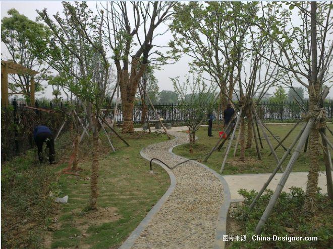 湾别墅庭院绿化-武汉克洛伊园林景观有限公司的设计师家园-现代田园风图片