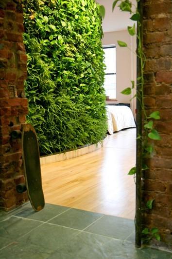 深圳市绿帘植物墙科技有限公司-建材企业会员-室内
